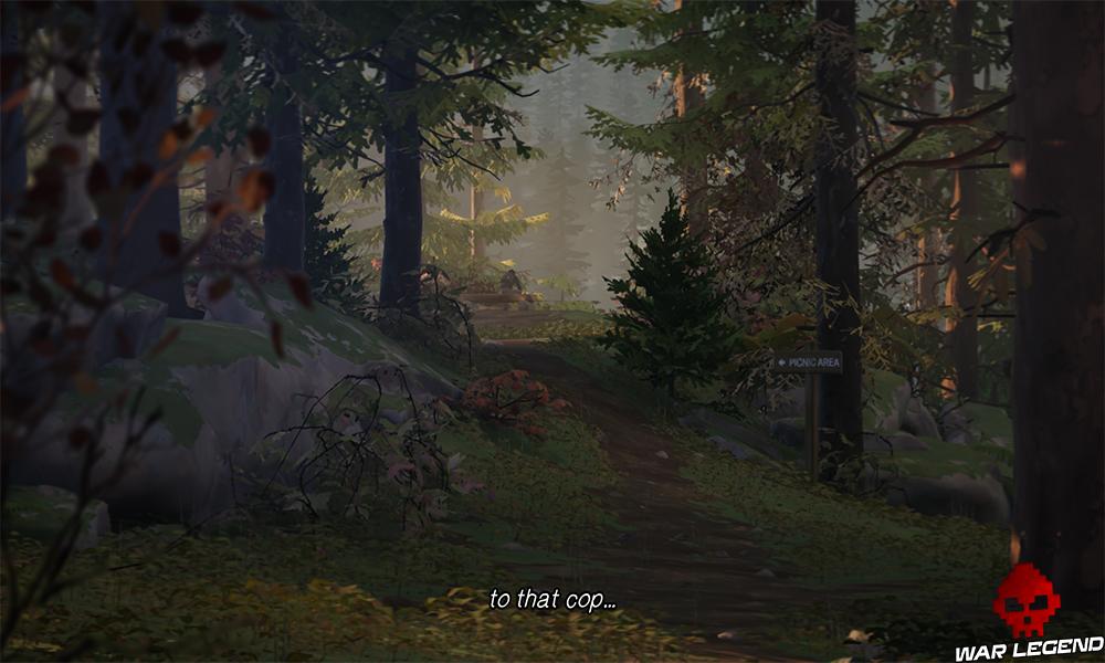 Un jeune homme assis sur un rondin au loin dans une forêt dense. Un panneau en bois indique