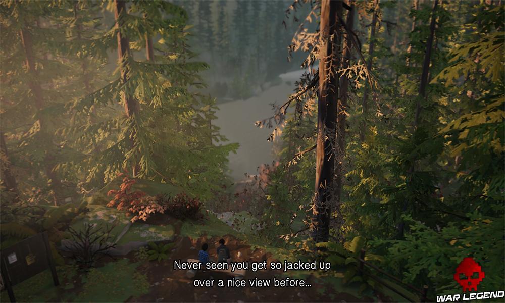 Deux frères assis sur un rondin de bois dans une forêt avec une vue sur un lac.