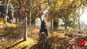 Test Assassin's Creed: Odyssey - Promenade en cheval dans les bois