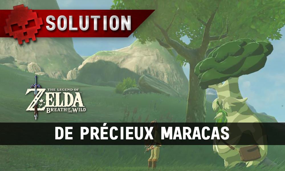 Soluce complète de Zelda Breath of the Wild De précieux maracas