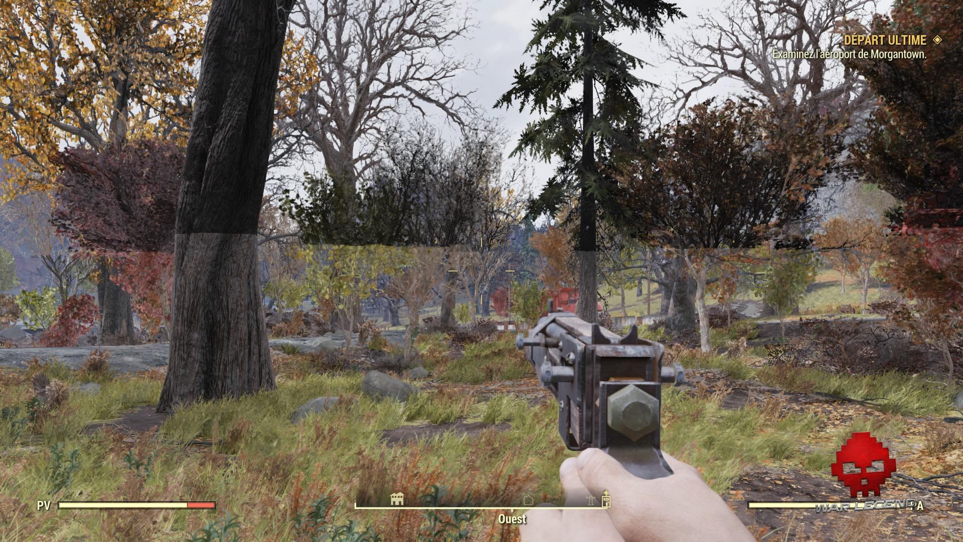 Fallout 76 un bug graphique