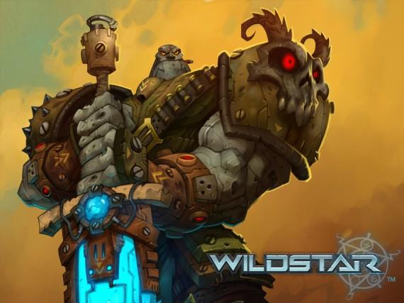 Bannière Wildstar