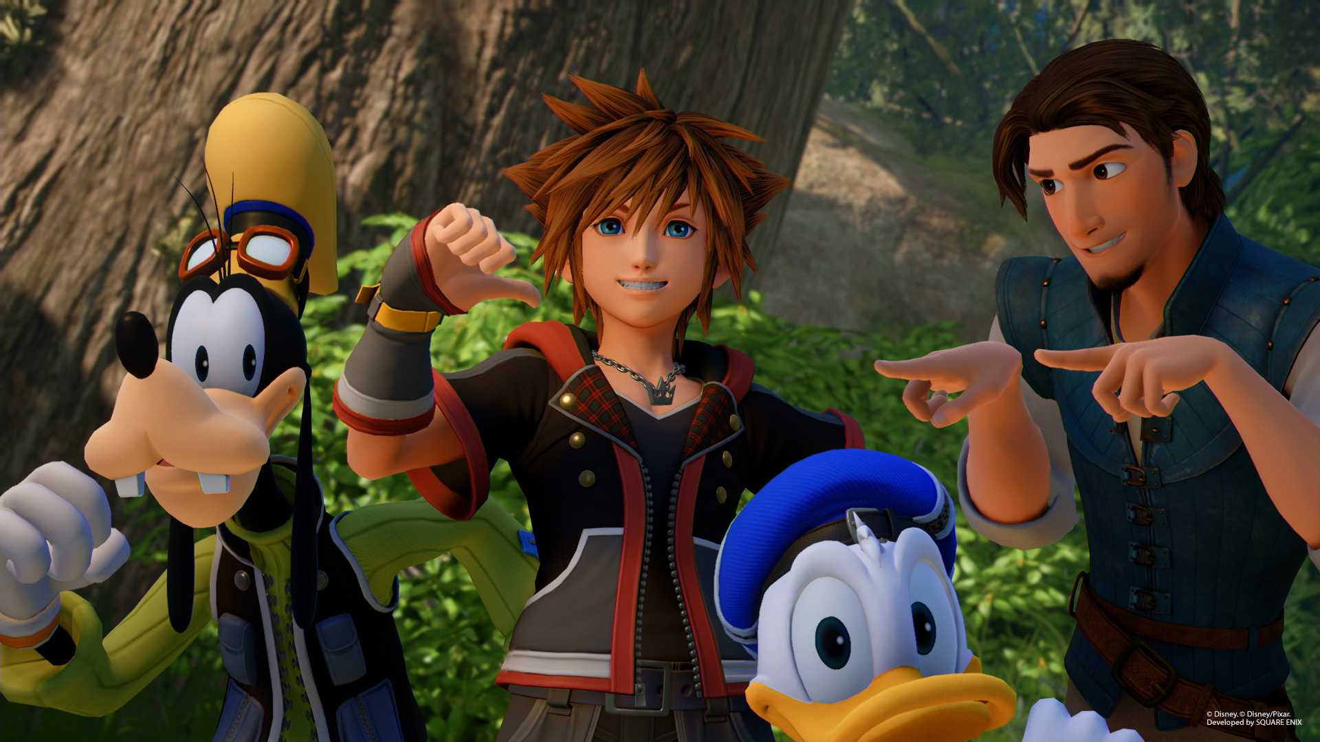 Kingdom Hearts 3 Fynn, Donald, Sora, Dingo