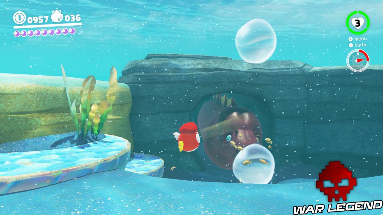 anguille sortant de son terrier sous-marin