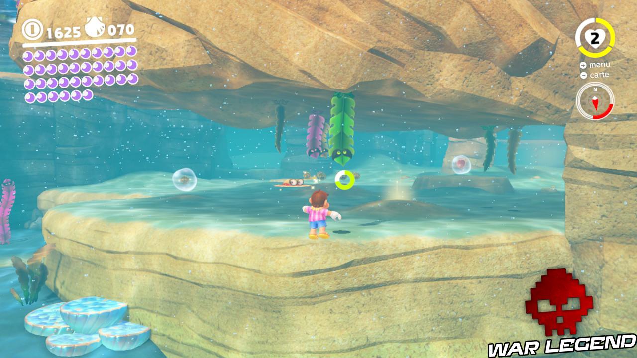 algues tête à l'envers se dirigeant vers Mario