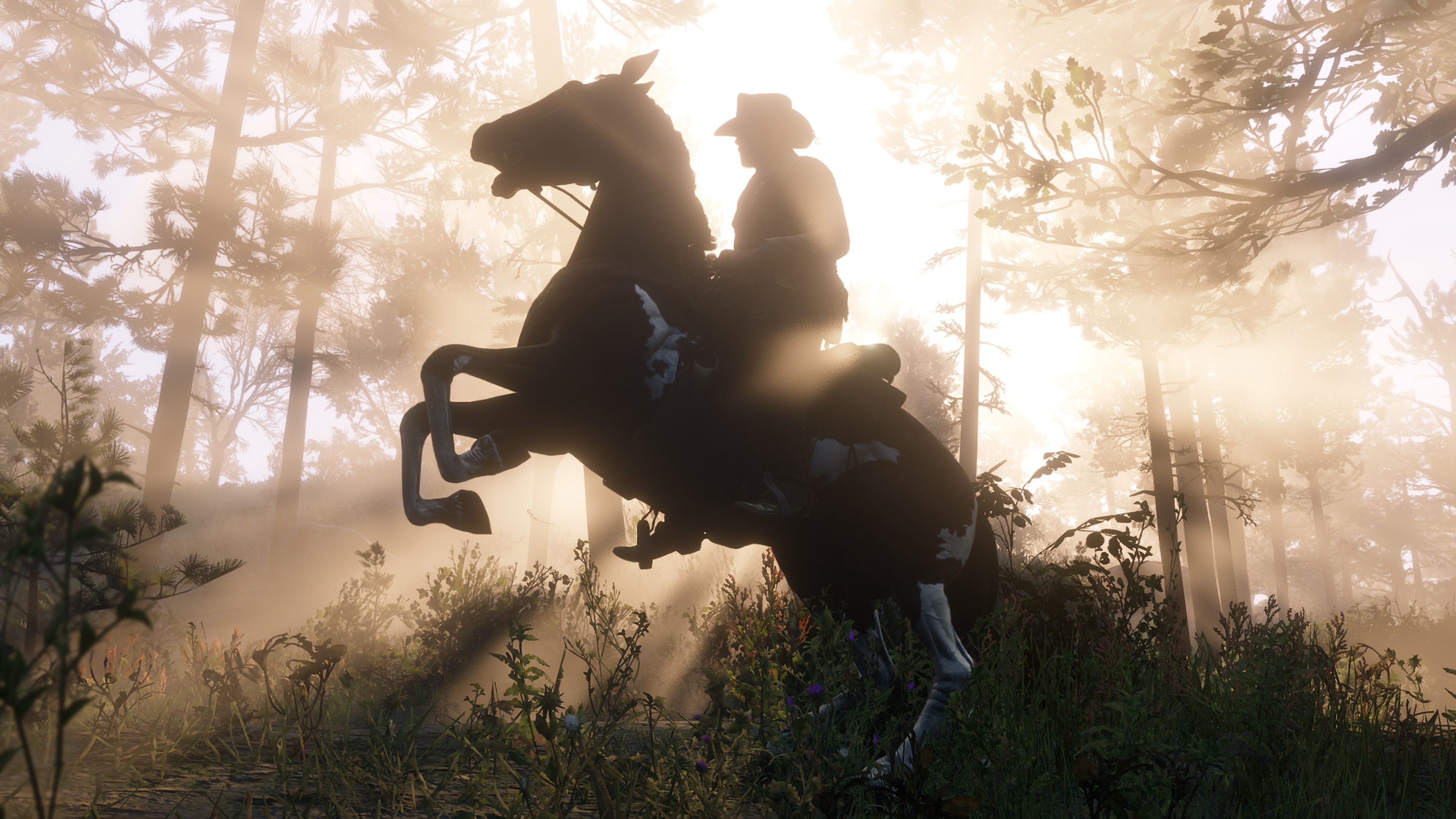 Red Dead Redemption 2 screenshot cavalier cabran son cheval à contrejour