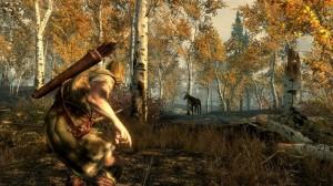 Camouflage The Elder Scrolls Online