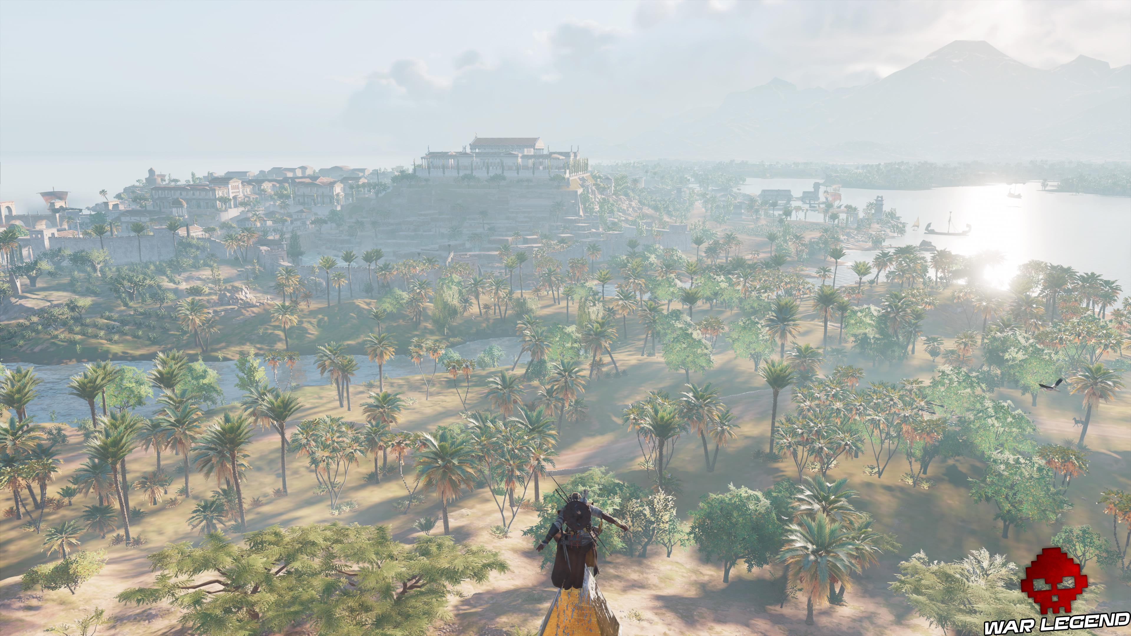 palmeraie egyptienne