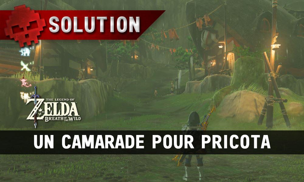Soluce complète de Zelda Breath of the Wild Un camarade pour Pricota