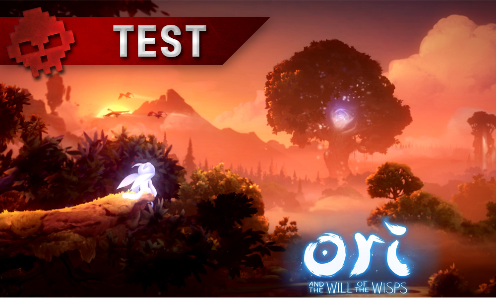 Vignette 2 test ori and the will of the wisps