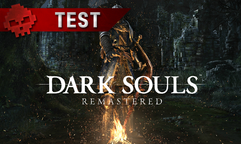 Vignette test Dark Souls Remastered