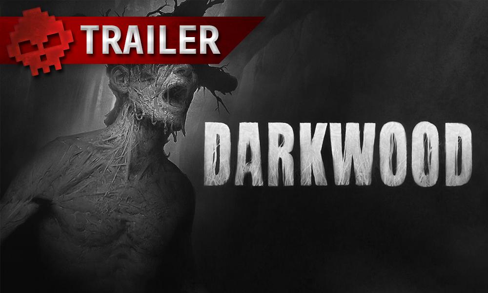 darkwood vignette