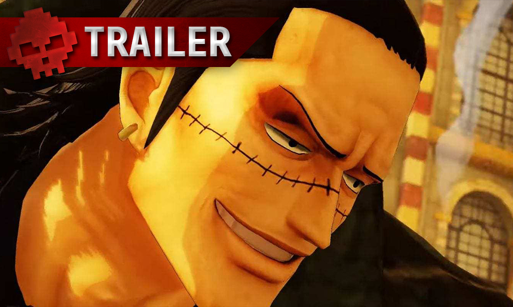 vignette one piece pirate warriors 4