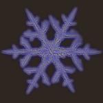Illustration du profil de Crystalizer