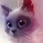 Illustration du profil de Lys