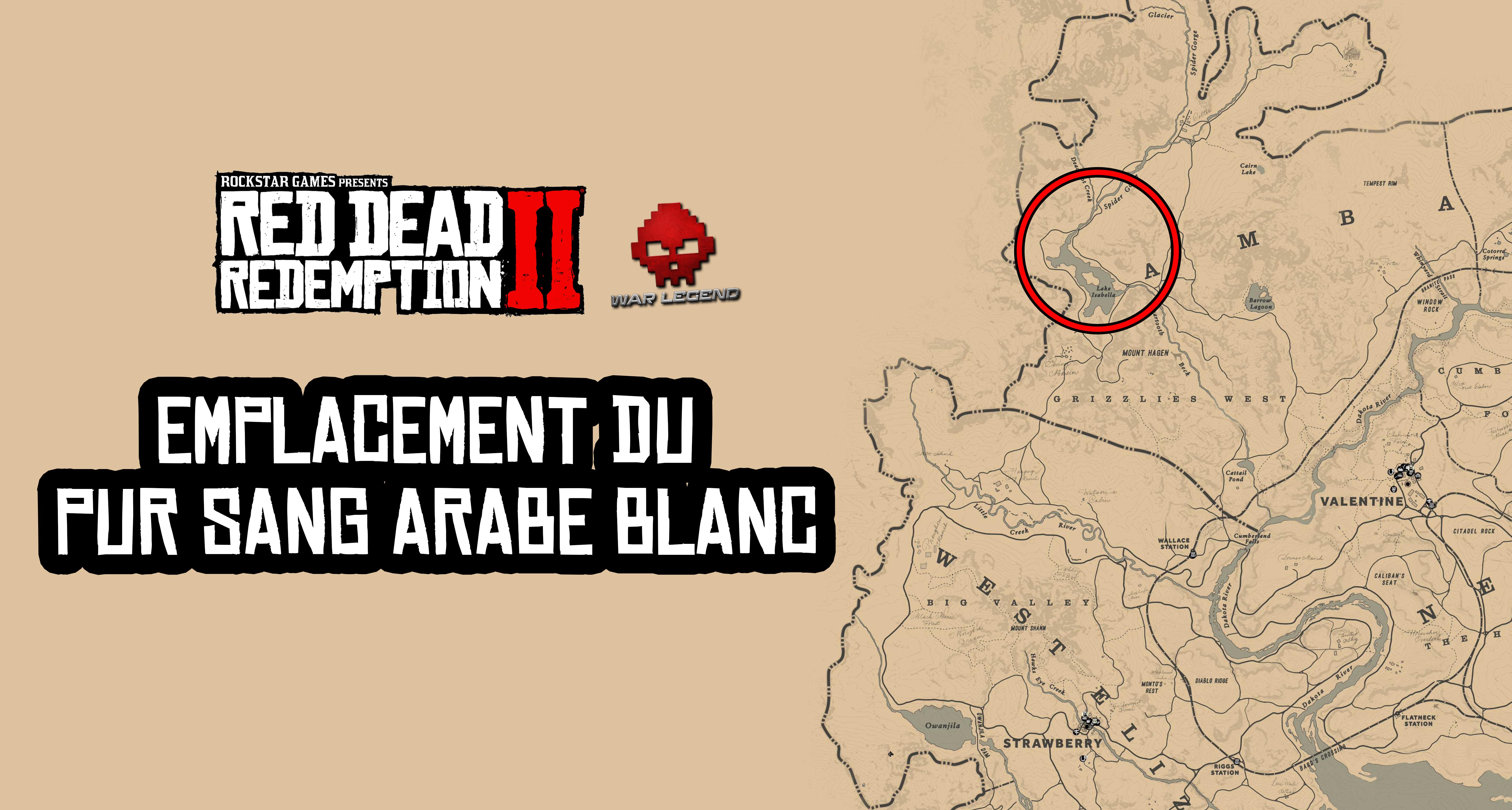 Guide Red Dead Redemption 2 Trouver et dompter le Pur sang arabe blanc Emplacement du Pur sang arabe blanc