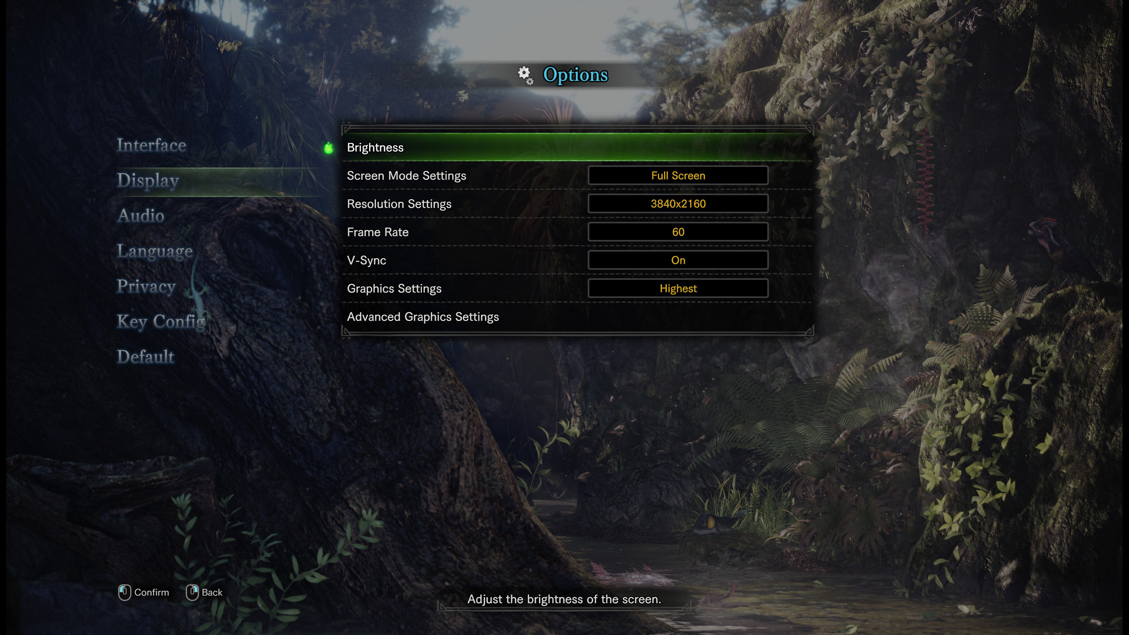 Screenshot options Monster Hunter World