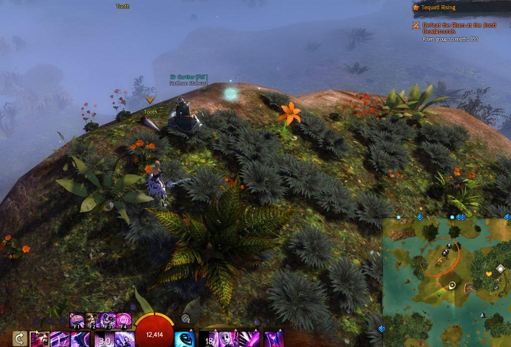 gw2-hunt-the-dragon-sparkfly-fen-clues-6