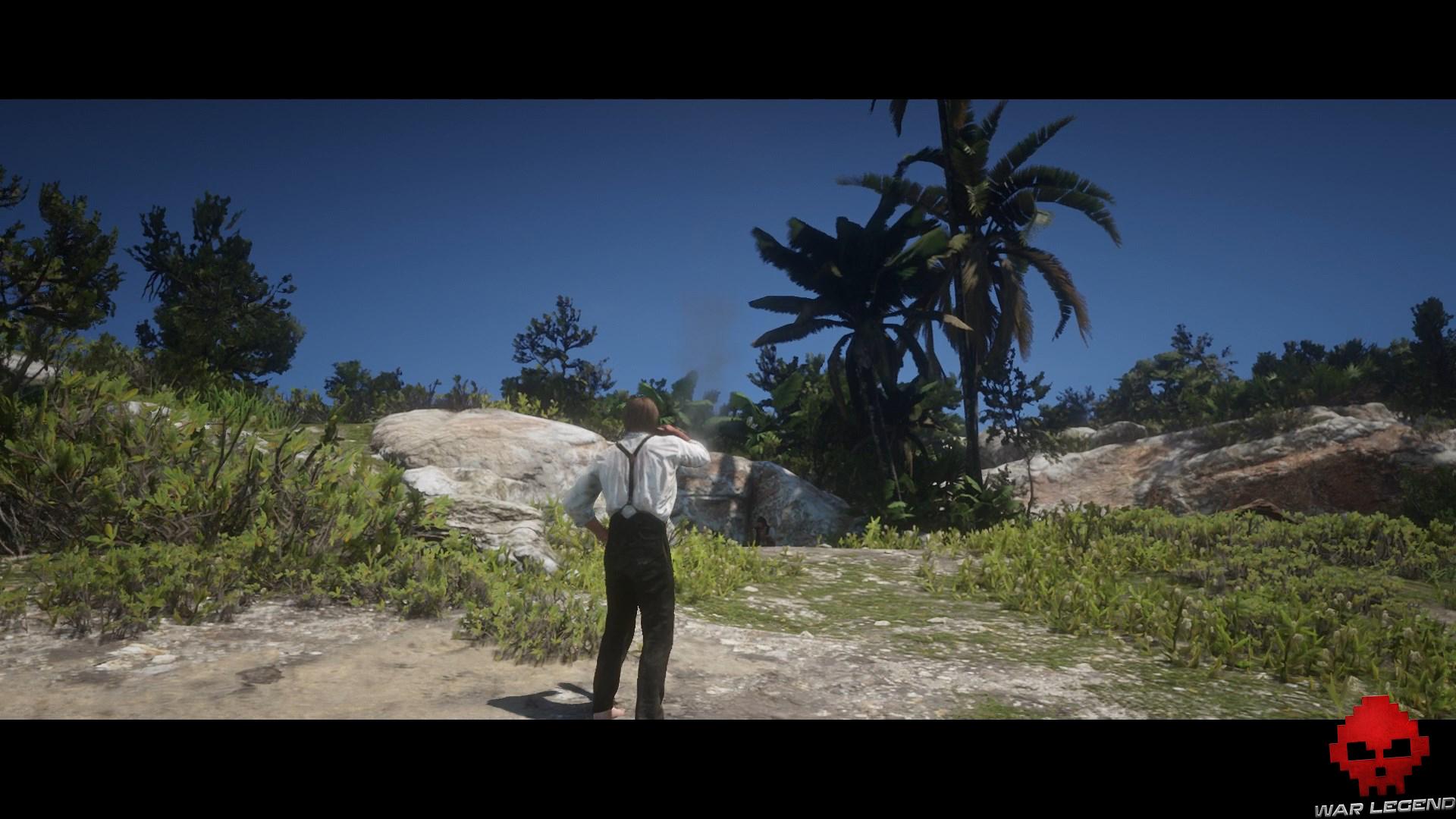 soluce red dead redemption 2 bienvenue dans le nouveau monde fumée sur la plage