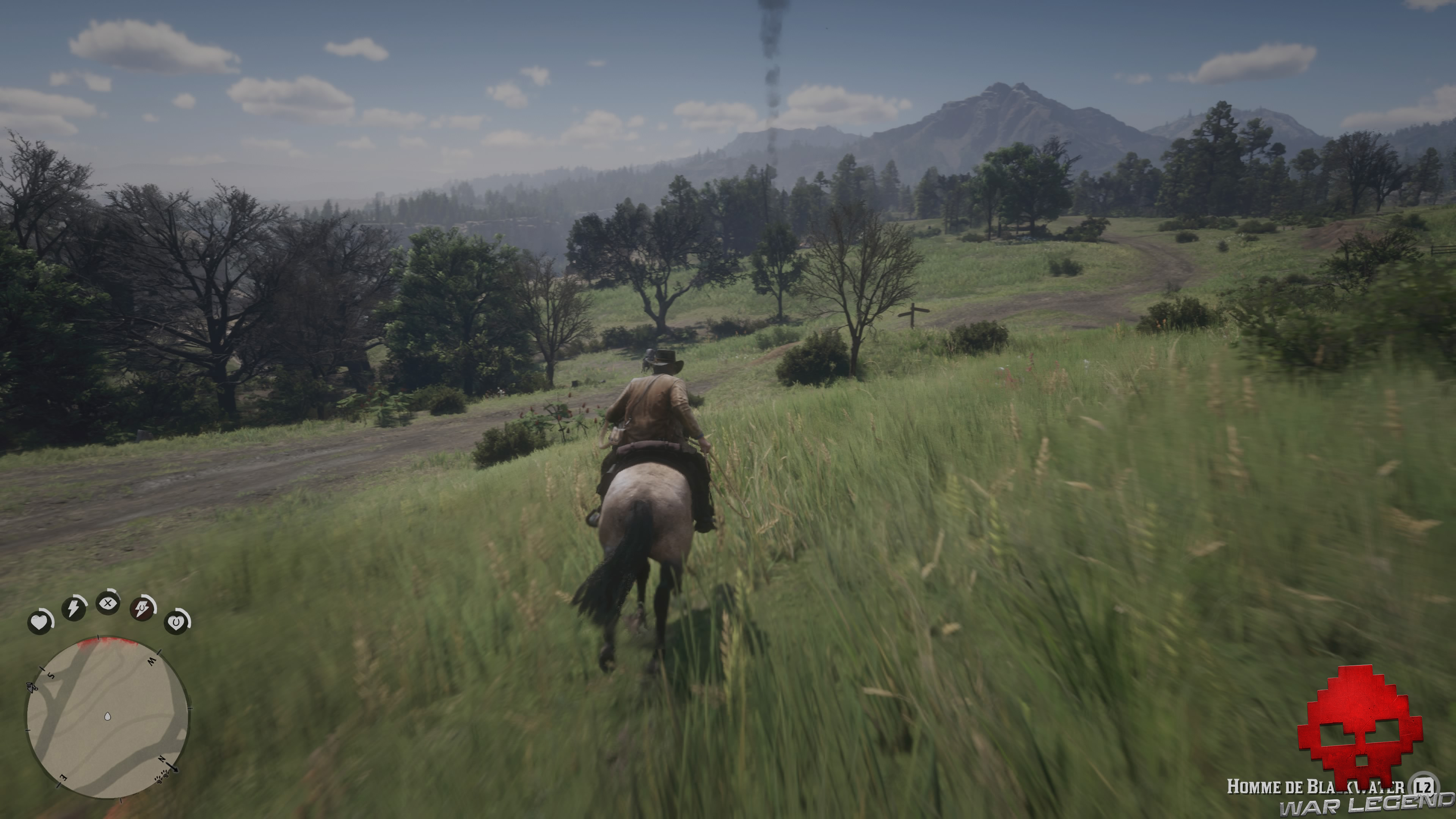 test red dead redemption 2 poursuite à cheval