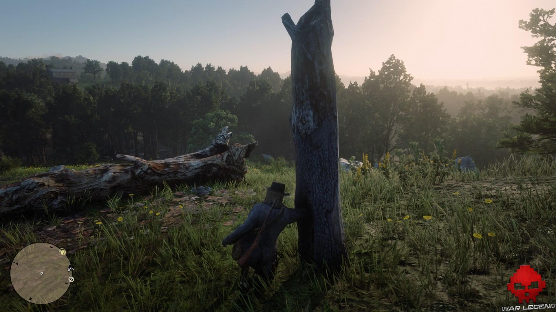 soluce red dead redemption 2 trésor de la piste empoisonnée arthur fouille dans un tronc d'arbre