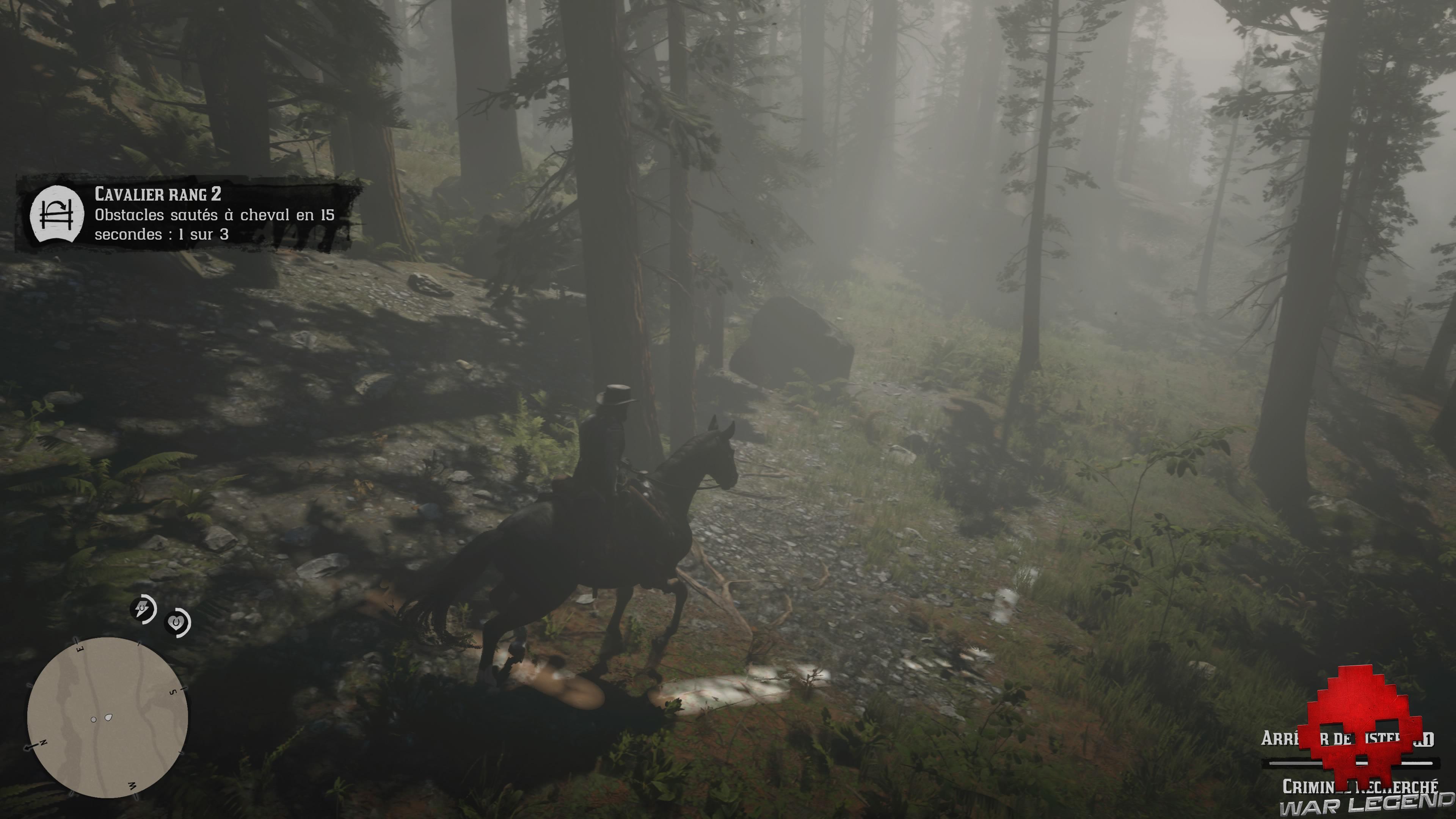 soluce red dead redemption 2 un ours mal léché piste en forêt