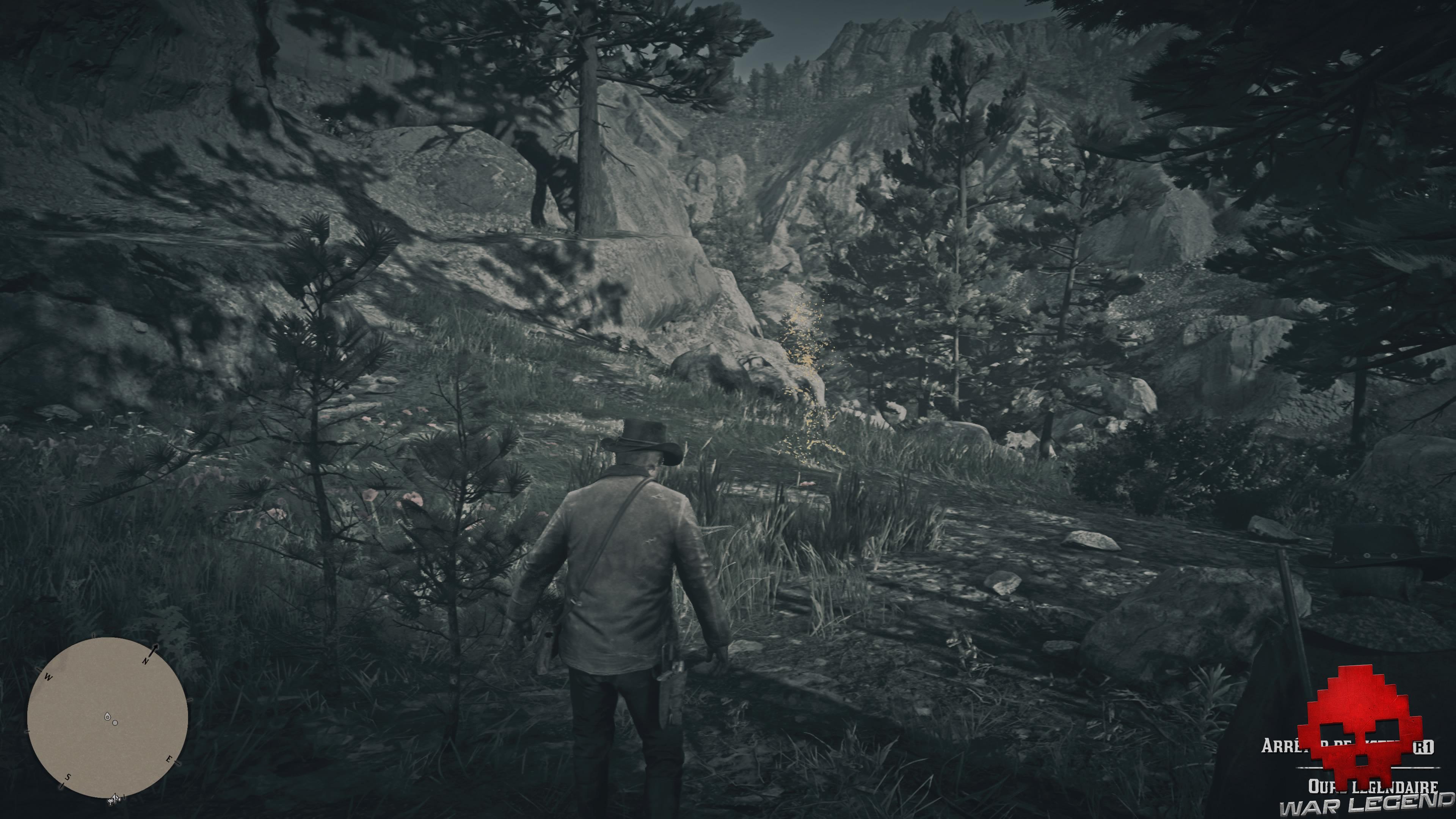 soluce red dead redemption 2 une blessure d'amour-propre indice ours dans les bois
