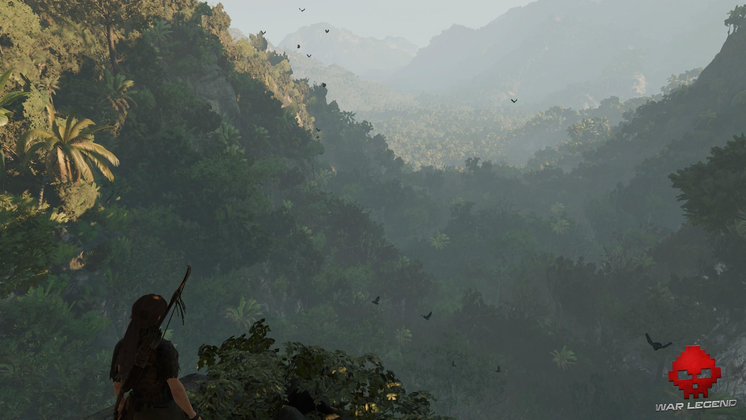 panorama d'une valée boisée