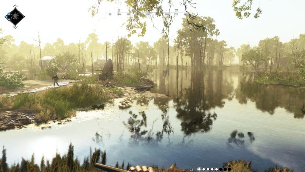 Un paysage de louisiane baigné d'une lumière brumeuse.