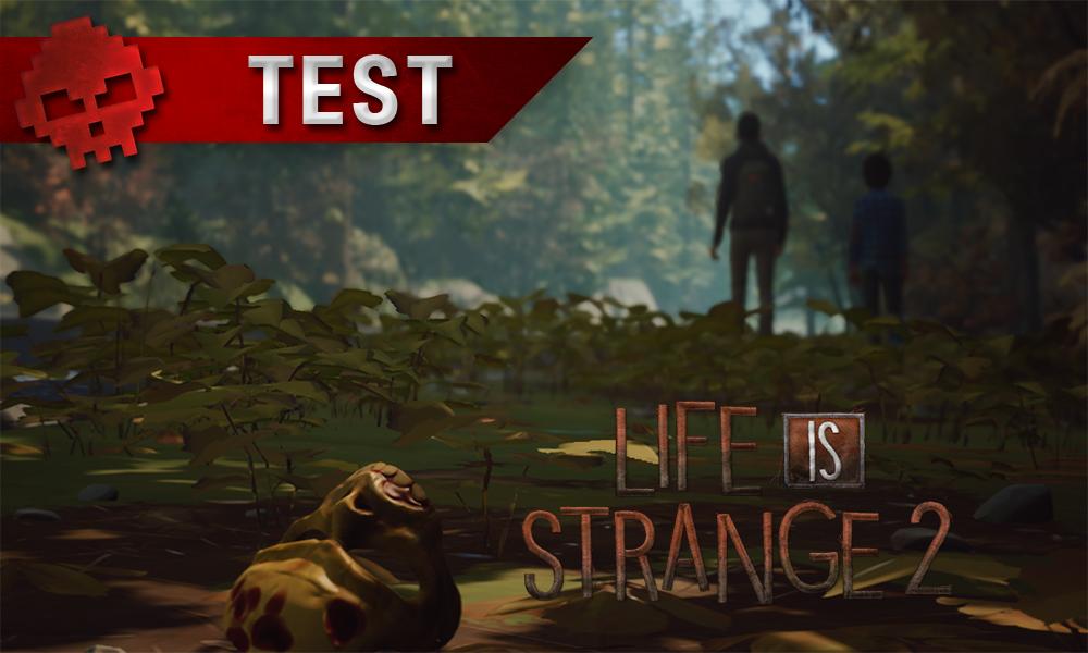 Banderole test avec nom du jeu et deux frères marchant au loin dans un paysage forestier